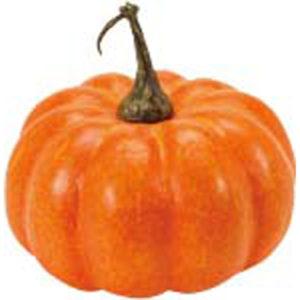 かぼちゃのことをパンプキンという若者