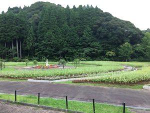 緑に囲まれた園内